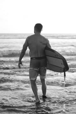 david surfer 3
